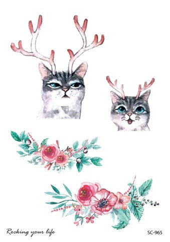 Cats with raindeer horns